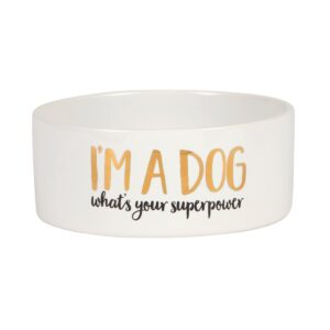 Dog Bowl by Sass and Belle