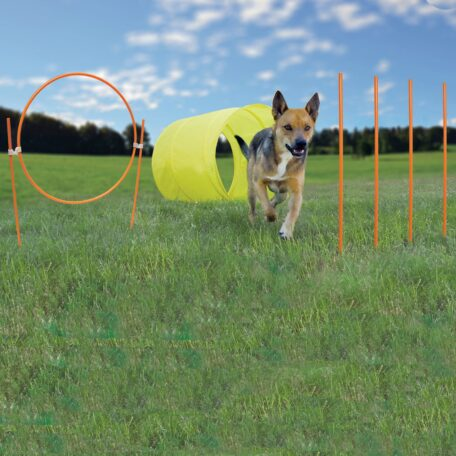 PJ065 ZipZoom Agility Kit Outdoor_2_preview
