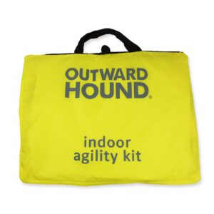 Indoor Dog Agility Kit from K9