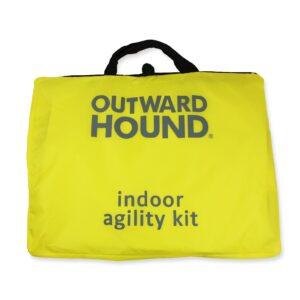 Indoor Dog Agility Kit