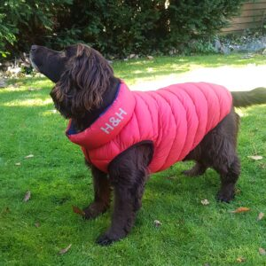 Dog Reversible Puffa / Padded Jacket by Hugo and Hudson REDUCED