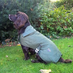 Lightweight Quilted / Padded Dog Jacket by Hugo and Hudson