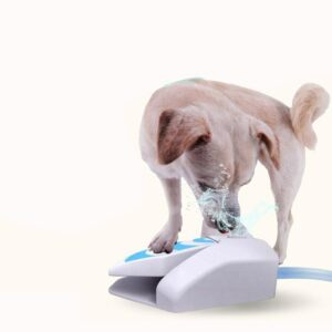 All For Paws – Dog Cooling Water Fountain