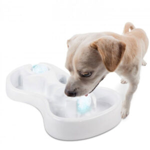 All For Paws – Ice Ball Dog Game – Cool Down Your Dog This Summer!