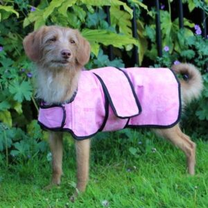 Dog Cooling Chiller Jacket By Aquamat (Pink)