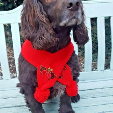 red xmas dog scarf 2 - Copy