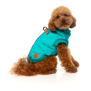 MacGyver Harness Jacket by FuzzYard in Teal, Black or Grey.