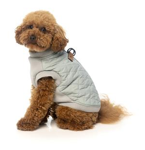 FZAW261-7_HarnessJacket_Macgyver_LightGrey_Dog_3_300x