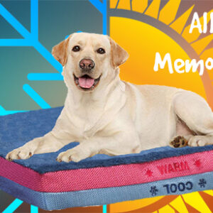 All Seasons Memory Foam Dog / Pet Bed from K9 Pursuits