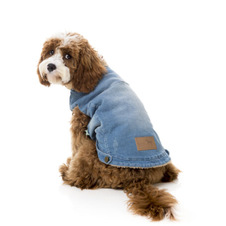 FZA271-7_Jacket_Rebel_Dog_7