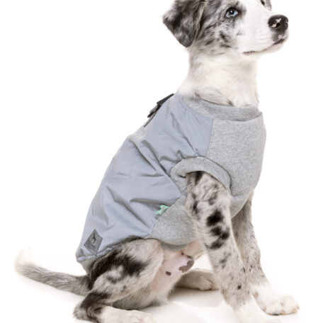 FZAW521-7_HarnessJacket_MacGyver_Reflective_Dog_11