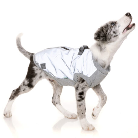 FZAW521-7_HarnessJacket_MacGyver_Reflective_Dog_18