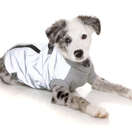 FZAW521-7_HarnessJacket_MacGyver_Reflective_Dog_19