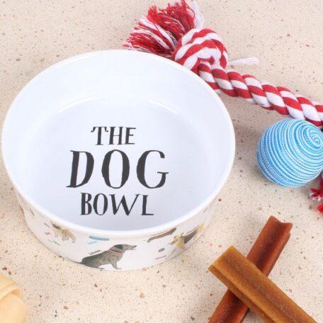 dog-bowl-3