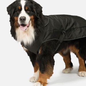 Black 2 in 1 Harness Dog Coat by Danish Design